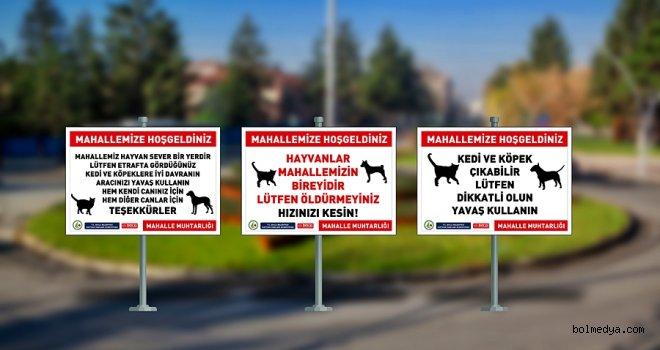 Bolu Belediyesi Hayvan Hakları Komisyonu'ndan farkındalık projesi
